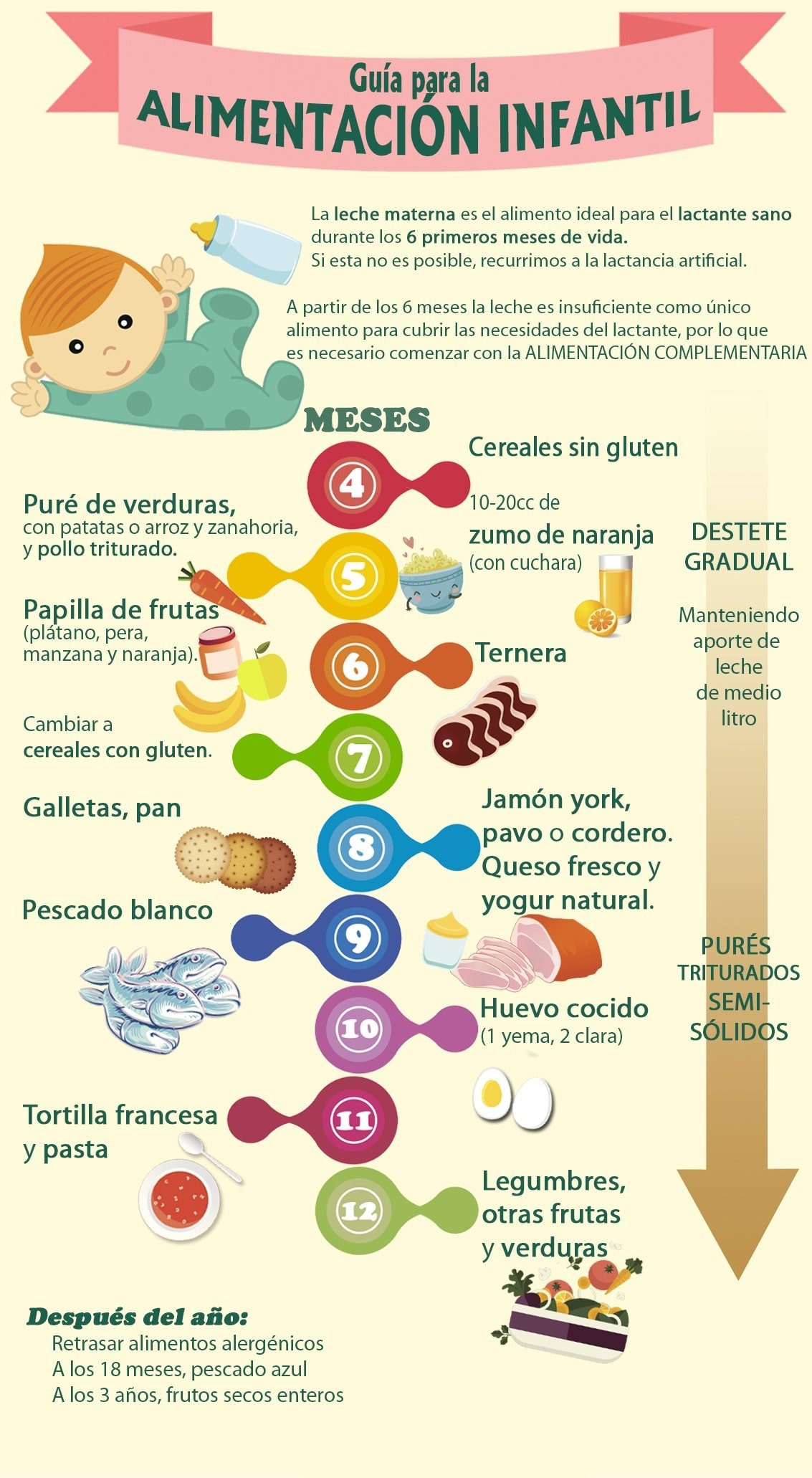 tabla-de-introduccion-de-alimentos-en-la-dieta-del-lactante