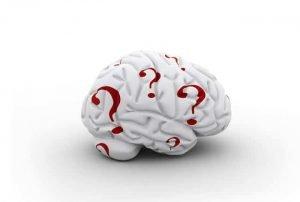 Preguntas en tu cerebro