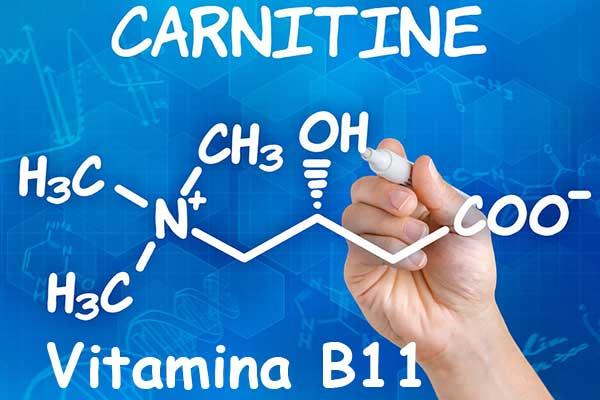 L-carnintina para quemar grasa