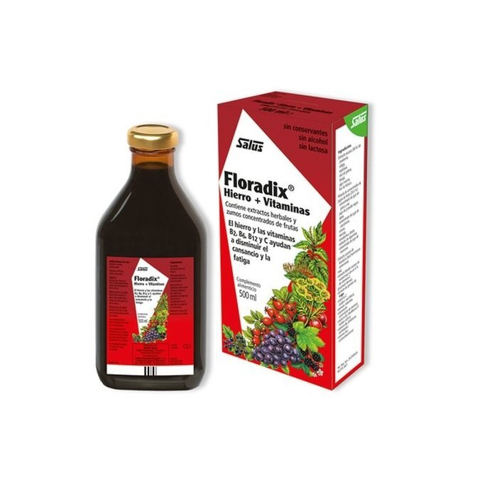 Floradix Hierro Jarabe 500 ml